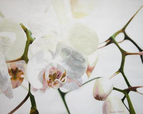Opulente Orchidee - dunjate Kunst in Acryl - Array auf Array - Array - Array